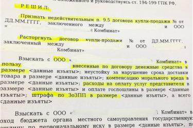 Штраф за просрочку договора купли продажи автомобиля